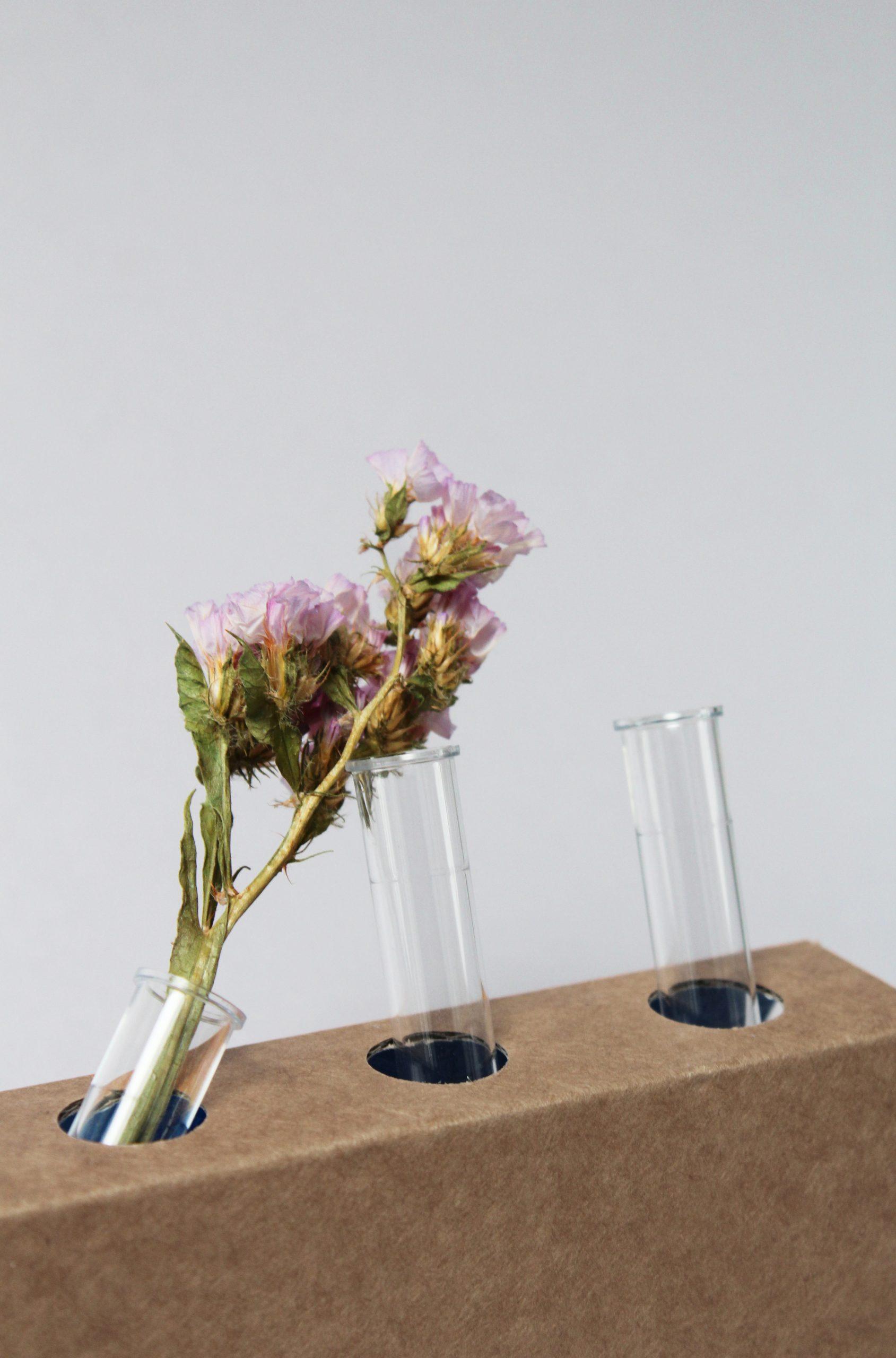 Flower_lab03